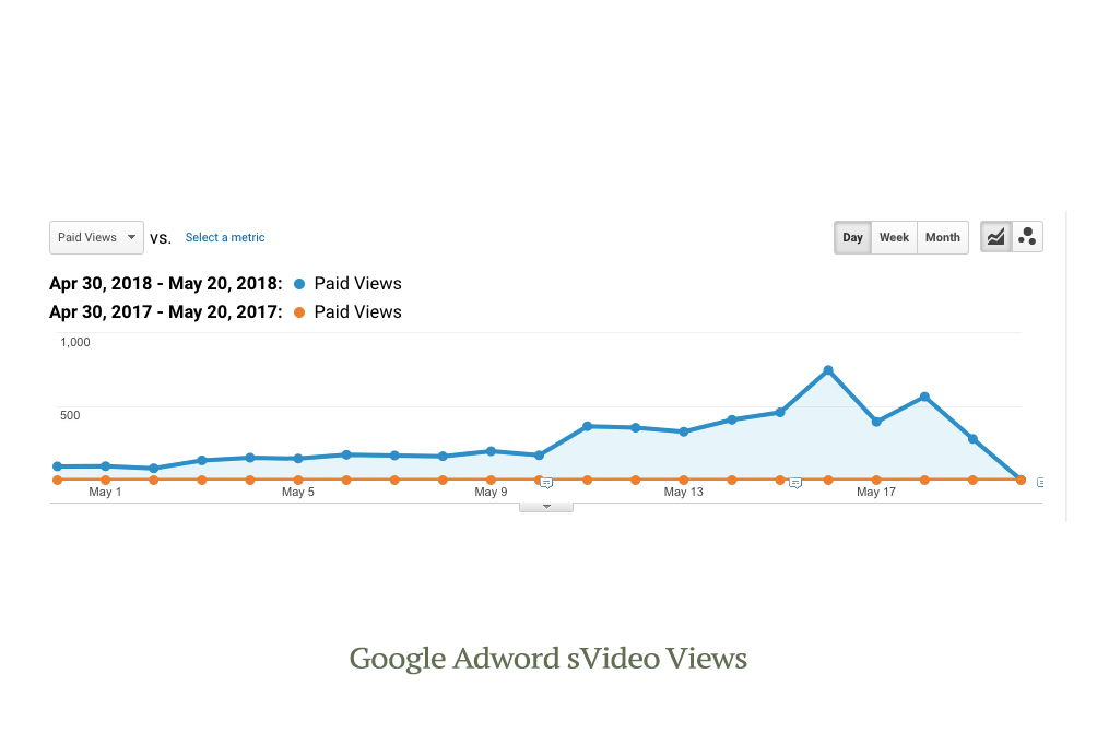 Google Adwords Video Views